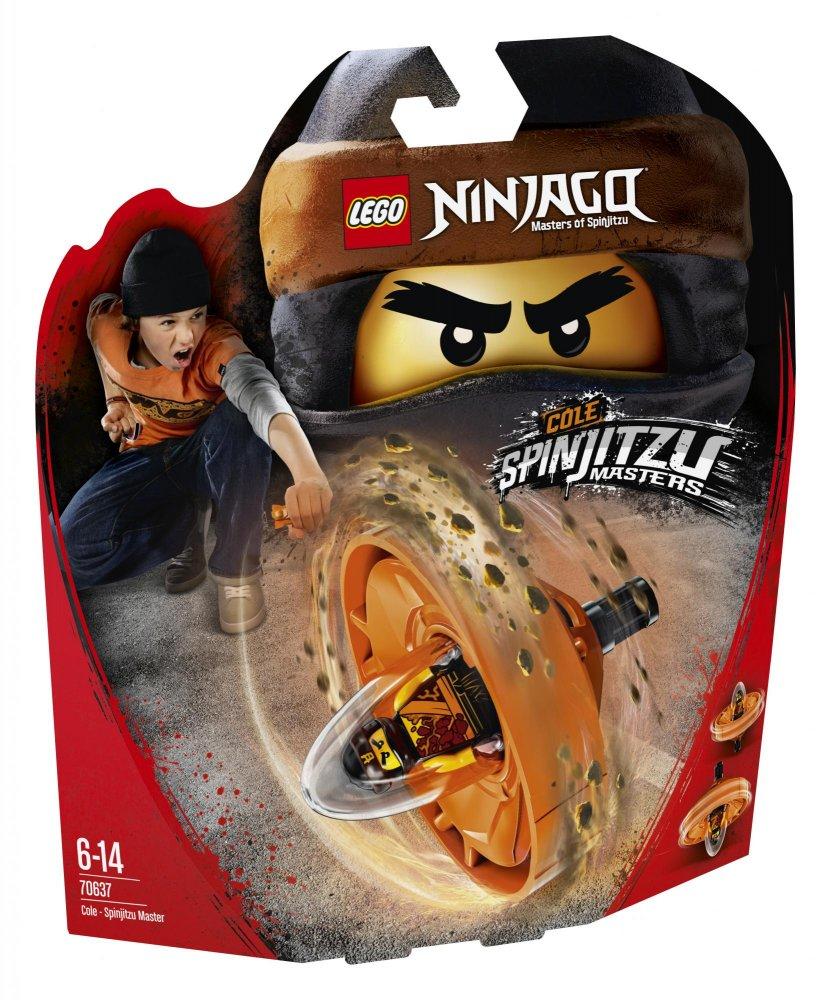 Lego Ninjago 70637 Cole Mistr Spinjitzu