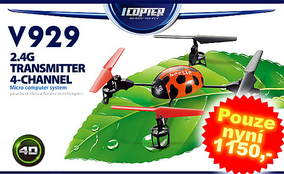 WL toys RC Beetle V929 RTF